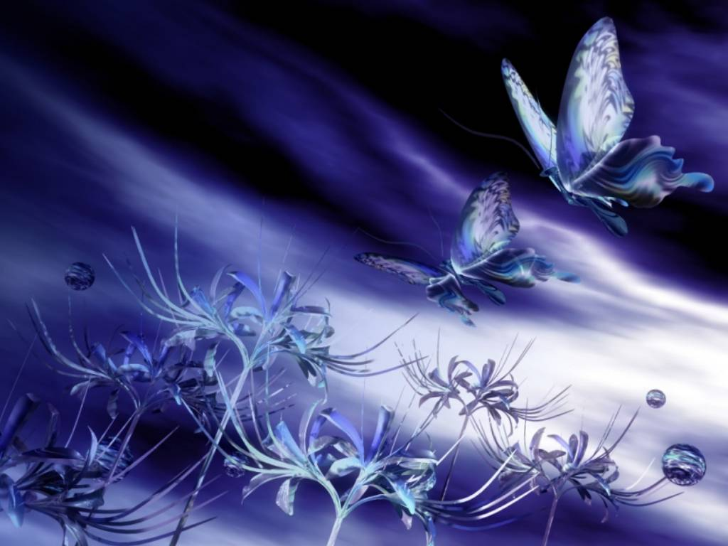 Papillon for Wallpaper gratuit